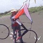 World's coolest kite