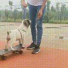 Yay, I can skate...