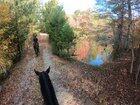 Fall trail ride in Georgia