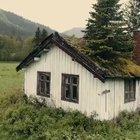 Hus med trær på taket i Hemsedal