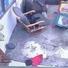 Cat blocks and prevents a baby from crawling to a fatal fall down some stairs