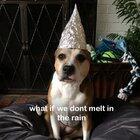 Tin foil hat time