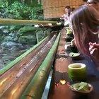 Kyoto : Noodles from a bamboo tube anyone?