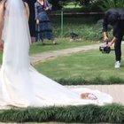 Wandering cat decides to crash a wedding