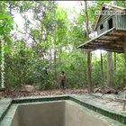 Watch a guy make his own pool in the woods - the classic.